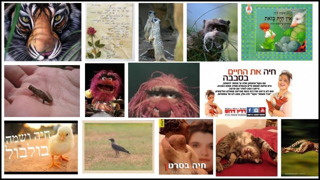 google-animal-2